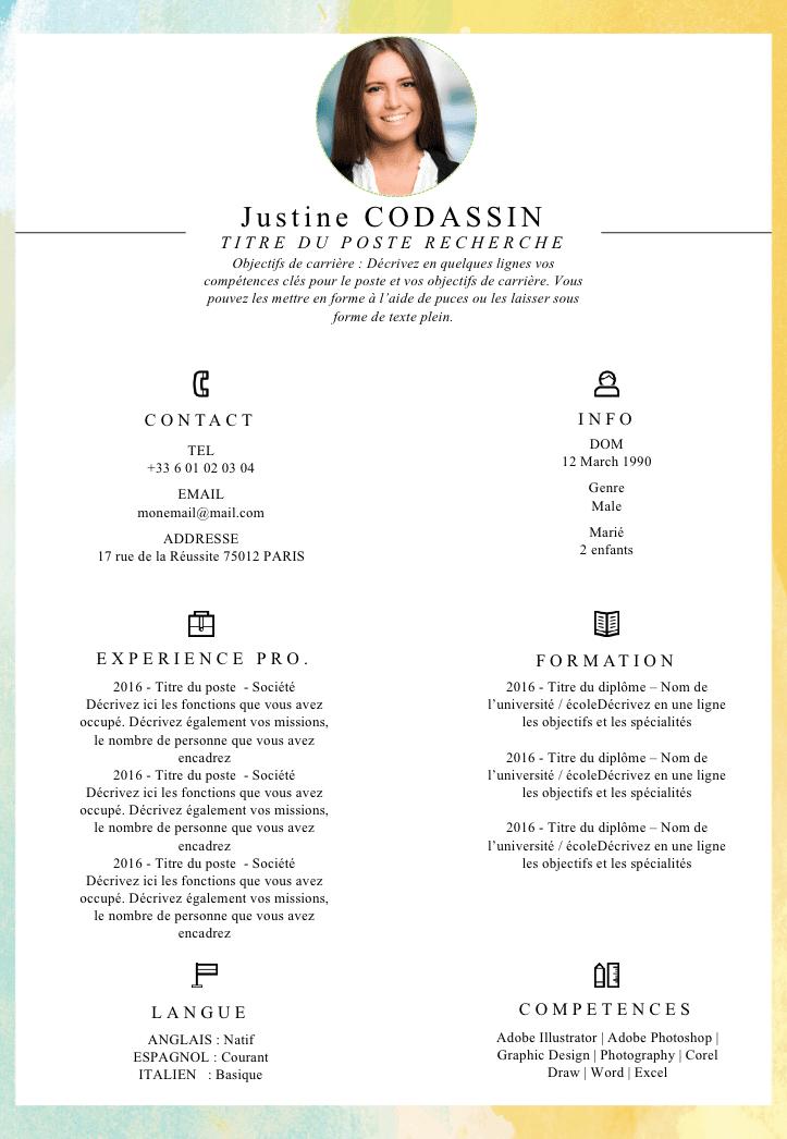 Exemple de CV Compétences gratuit à télécharger Exemple