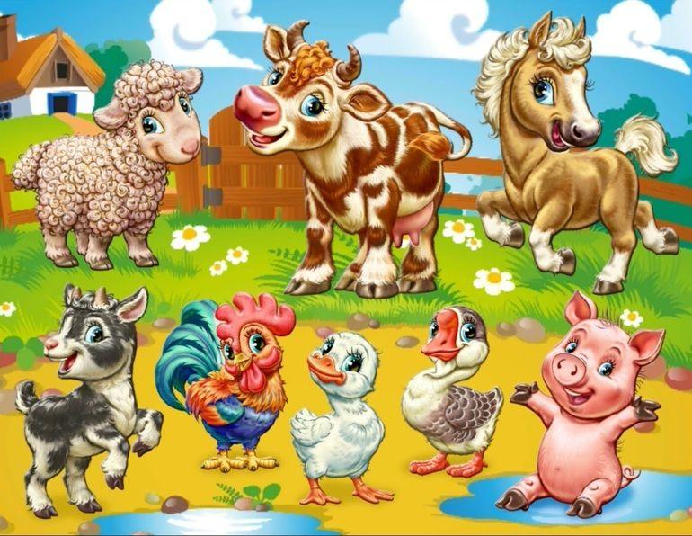 сборник картинок домашние животные