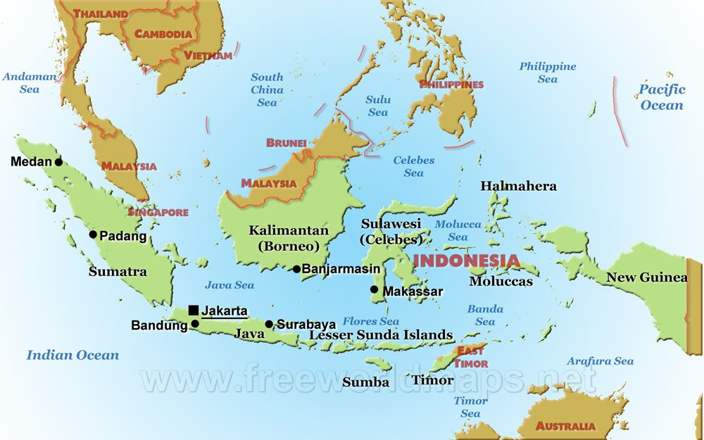 Where Is The Amazon Rainforest Located Map Facts