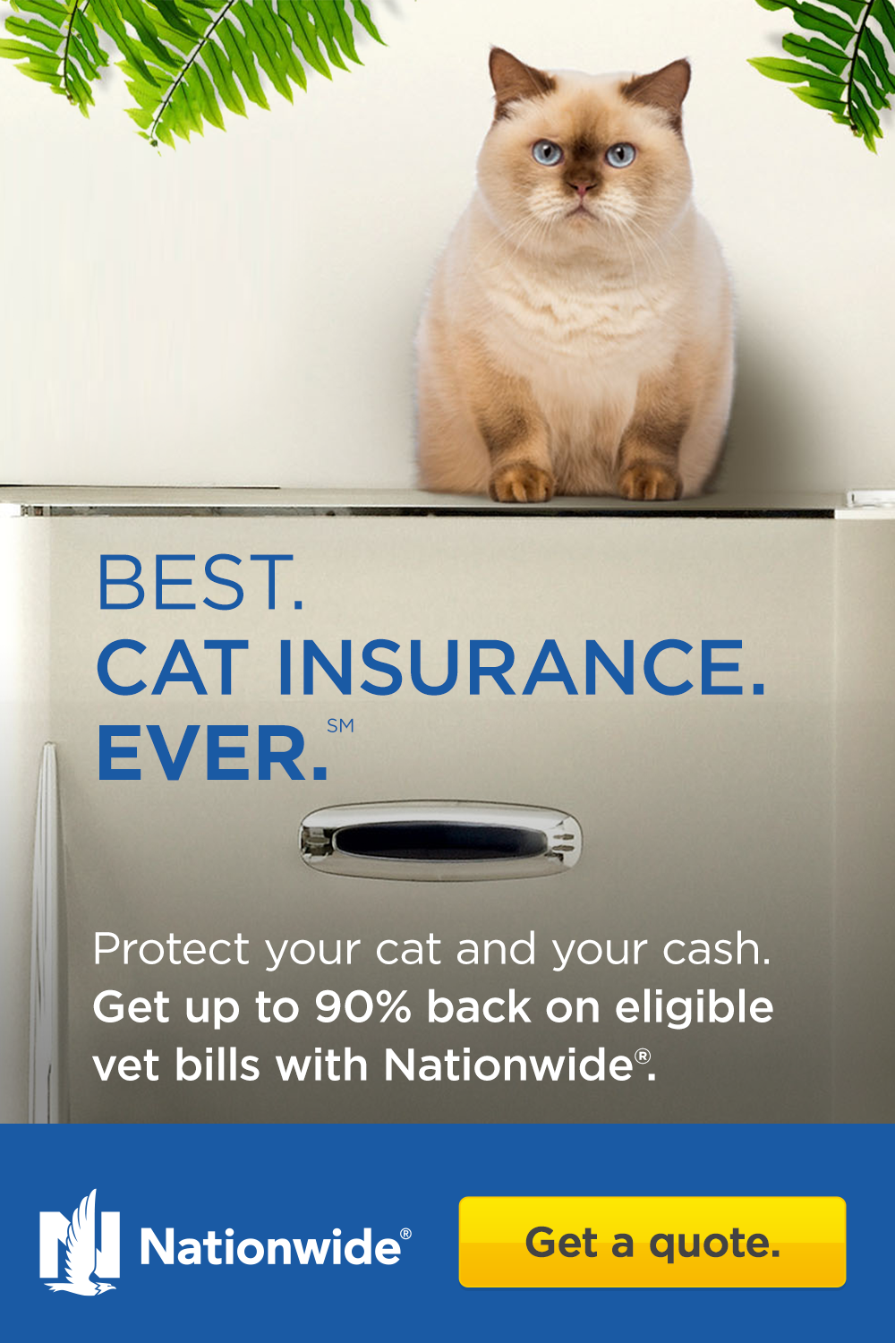 Get Up To 90 Back On Eligible Vet Bills With Nationwide Cat Insurance Beautiful Cats Pictures Cute Baby Animals
