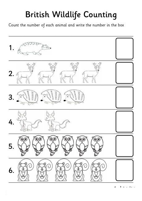 Jungle Animal Number Count Worksheet Preschool Printable