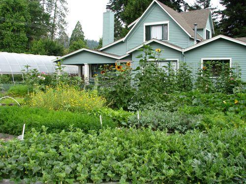 Original Love Apple Farms in Ben Lomond, California