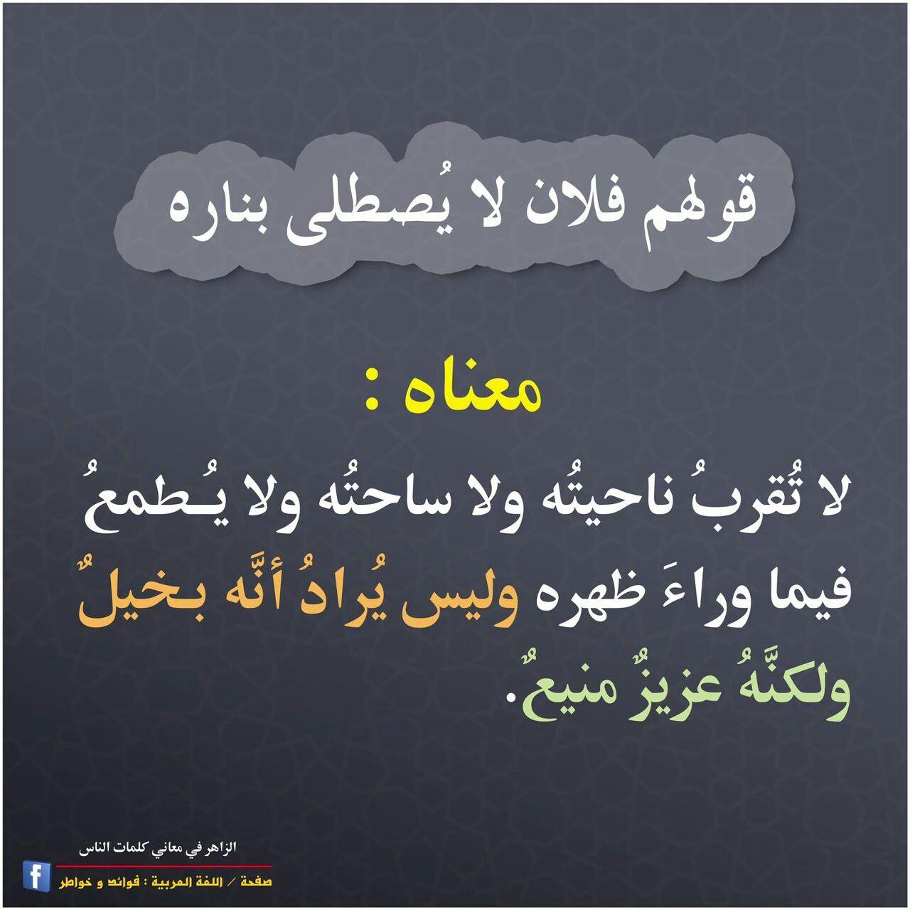 معنى قولهم فلان لا يصطلى بناره Beautiful Arabic Words Learn Arabic Language Arabic Language