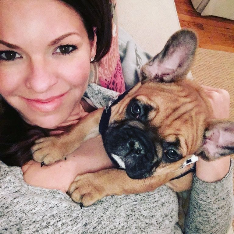 Pin by Fancy Miss Hansen on Frenchies Puppies, Animals, Pup