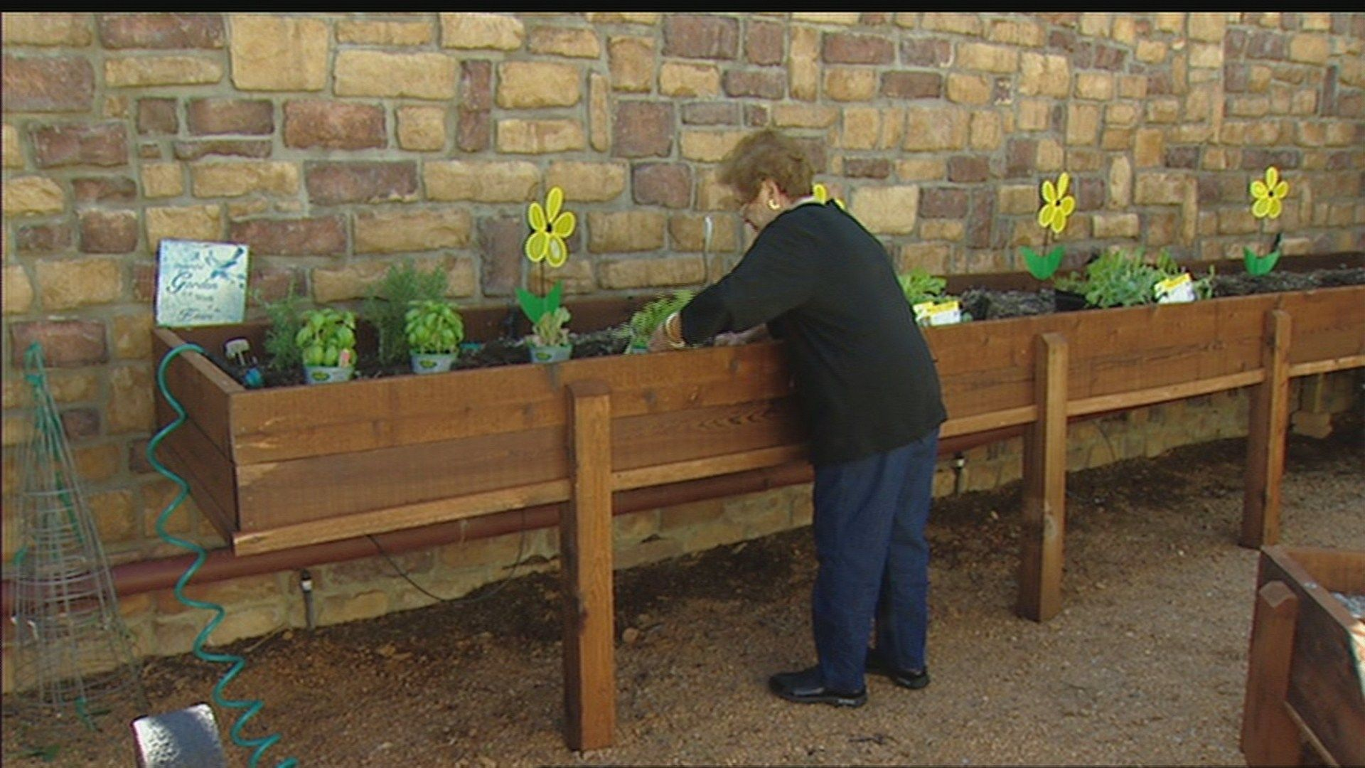 Horticulture therapy growing in memory care centers | wfaa.com ...