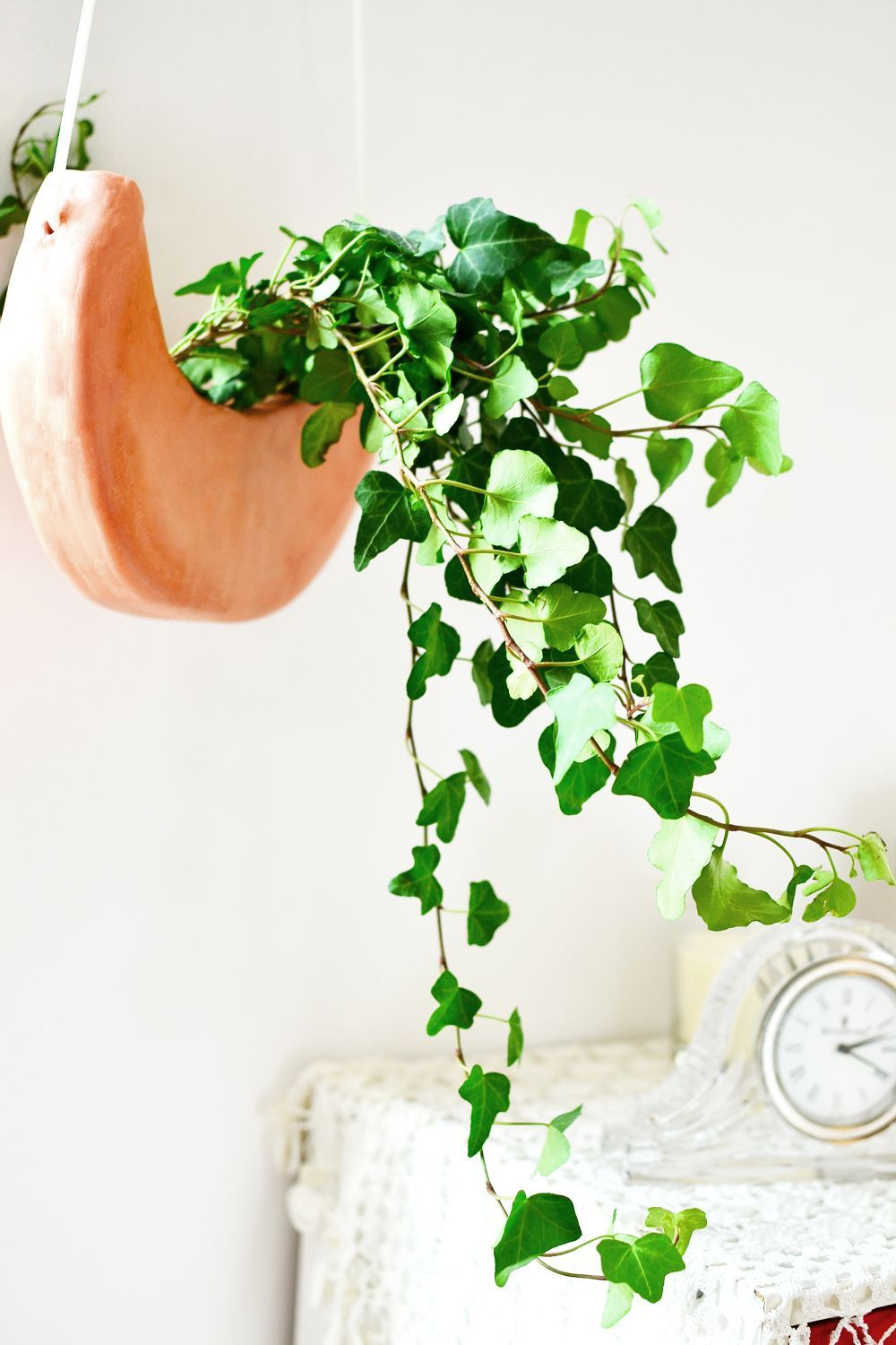 DIY Crescent Moon Hanging Planter Diy hanging planter