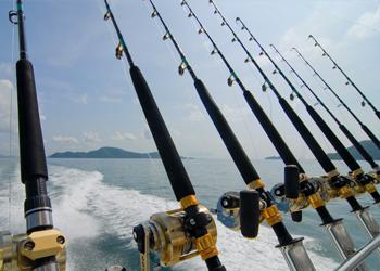 Reel Blue Ulimate Luxury Fishing Charters In Phuket Shark Fishing Salt Water Fishing Fishing Places
