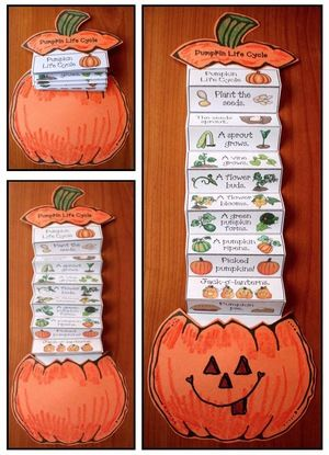 Life Cycle of a Pumpkin Activities Emergent Reader and Crafts Co