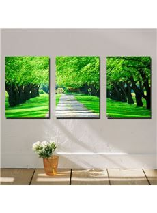 New Arrival Green Trees Along The Road Canvas Wall Prints