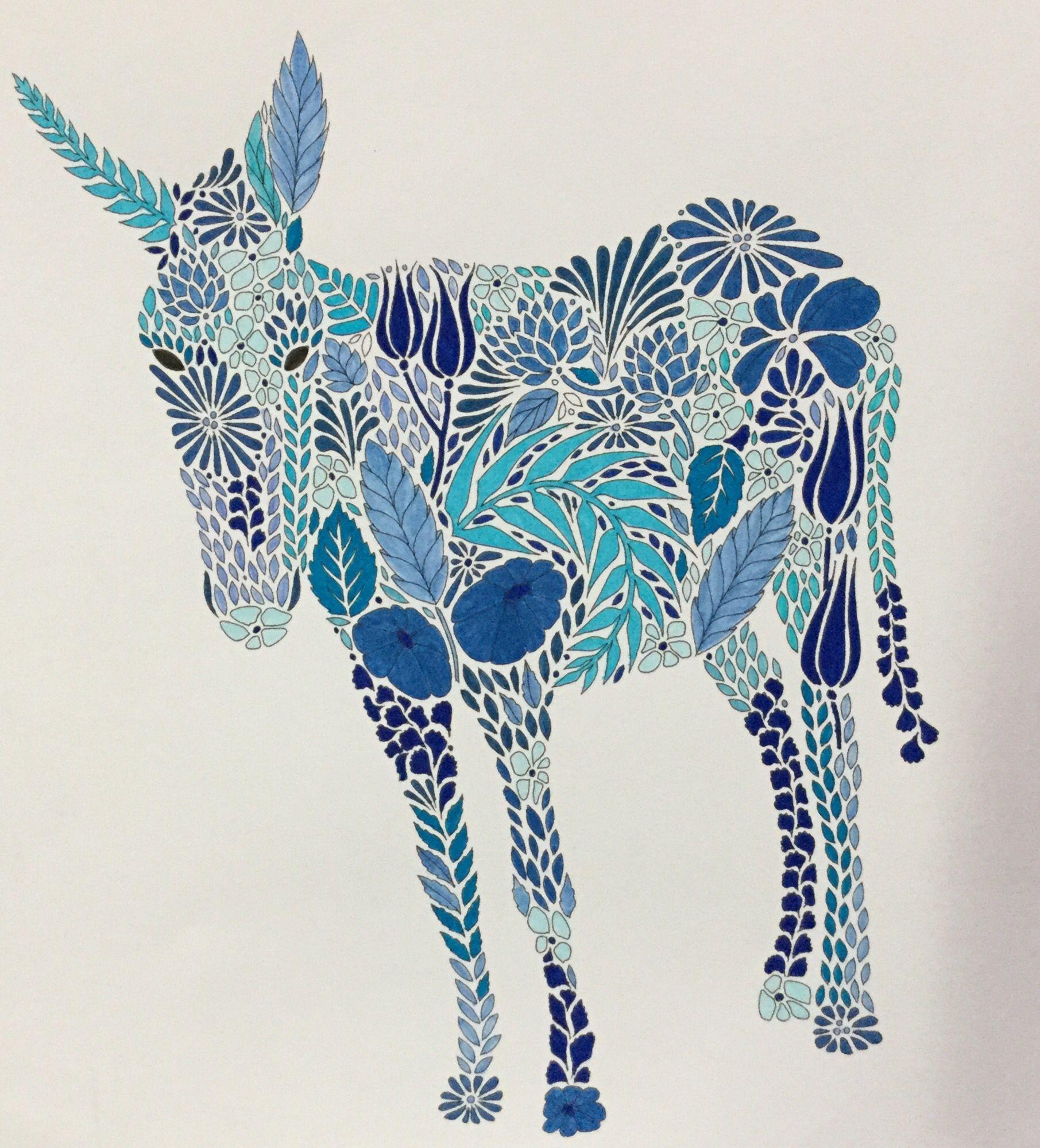 Colouring Millie Marotta Donkey Ane