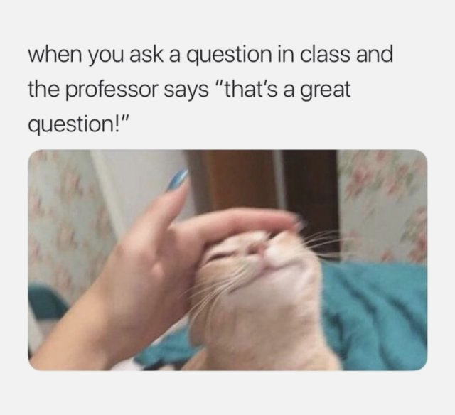 100 Funny Memes Of The Day To Make Your Laugh Funnyfoto Funny Relatable Memes Funny School Memes Funny Memes