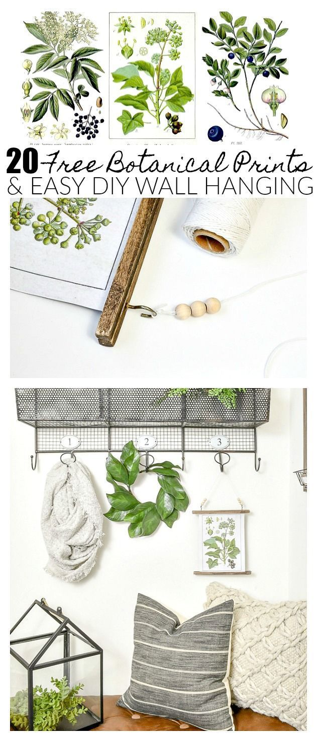 free botanical prints and easy diy wall hanging craft ideas