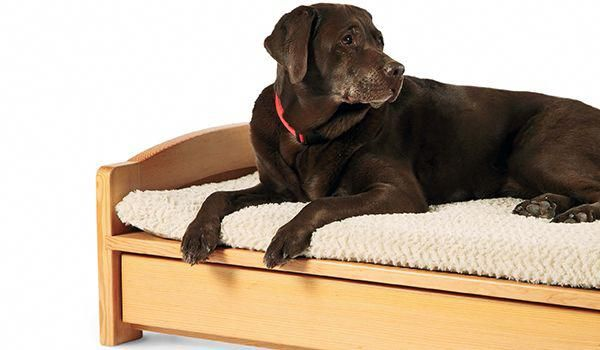 A Woodworker's Dog Bed - Woodworking | Blog | Videos | Plans | How To #OutdoorWoodworkingTools