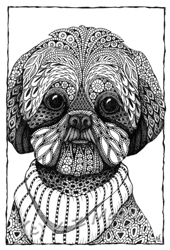 small med breed dog portraits matted prints select small medium breeds adult colouring simply. Black Bedroom Furniture Sets. Home Design Ideas