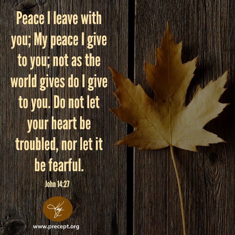 Only God can give us peace... Don't fear!
