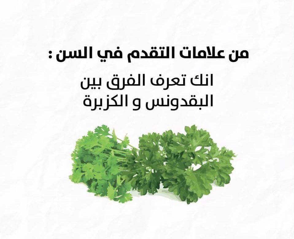Pin By صورة و كلمة On ابتسامة ᴗ Funny Funny Words Arabic Words Words
