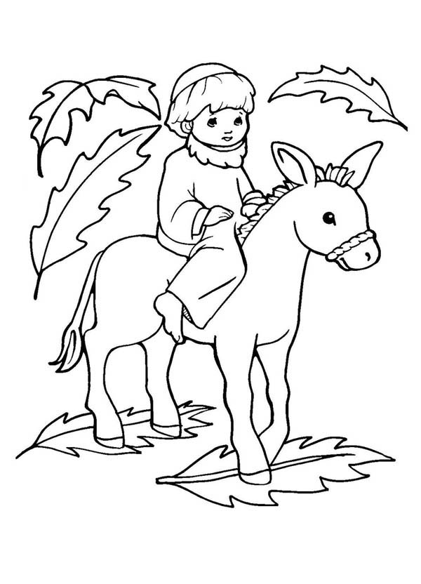 Picture Of Jesus On A Donkey Palm Sunday Coloring Page