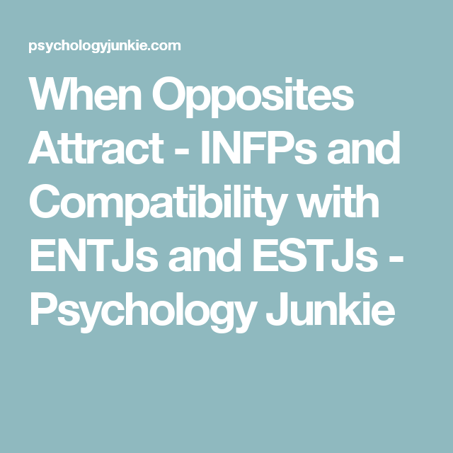 When Opposites Attract - INFPs and Compatibility with ENTJs