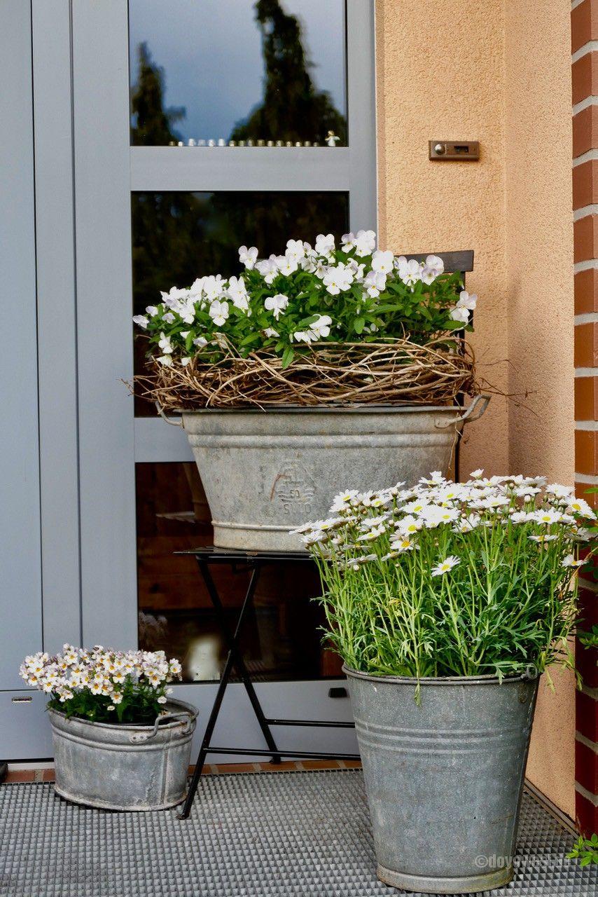 Photo of Zinkgrau und Blütenweiss – Karin Urban – NaturalSTyle