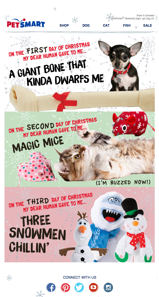 Petsmart Christmas Hours.Petsmart Christmas Email For 2014 The Pet Days Of Christmas