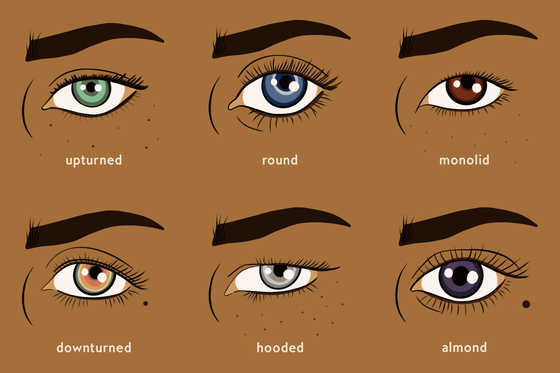 Everything you need to know about applying makeup for your