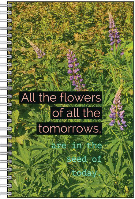 Notebooks/Journals Nova Scotia Nature (Blank, Lined