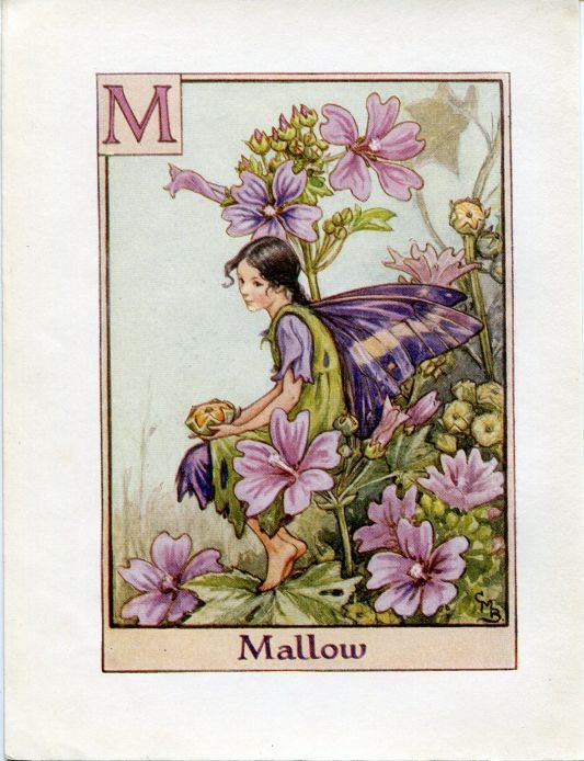 Mallow Flower Fairy Vintage Print C 1940 Cicely Mary Barker Etsy Flower Fairies Books Flower Fairies Flower Fairy