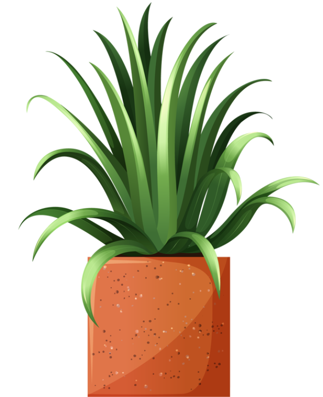 Clip Art Of Beautiful Plants For The Spring Garden Plant 4