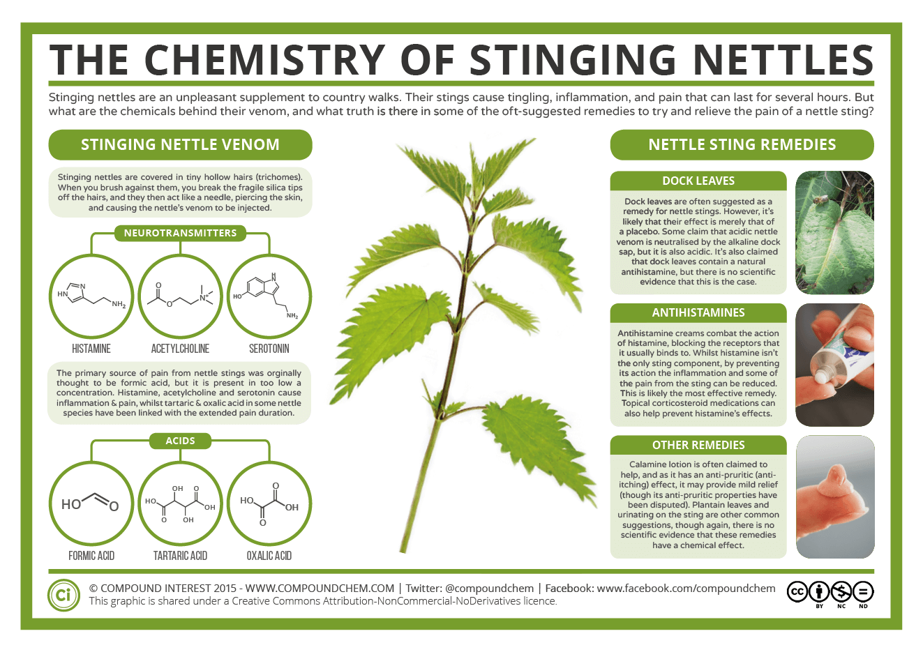 The Chemistry of Stinging Nettles | Chemistry, Science chemistry,  Biochemistry