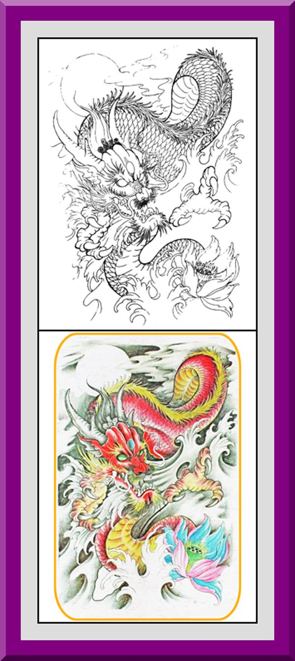 Printable Dragons Coloring Pages 30 High Definition Black Outlines With Colored Examples