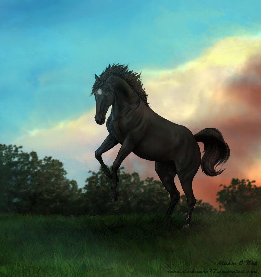 Popular Wallpaper Horse Flicka - 8dd56f911efdcc9704dd6916709007e6  Graphic_434617.jpg