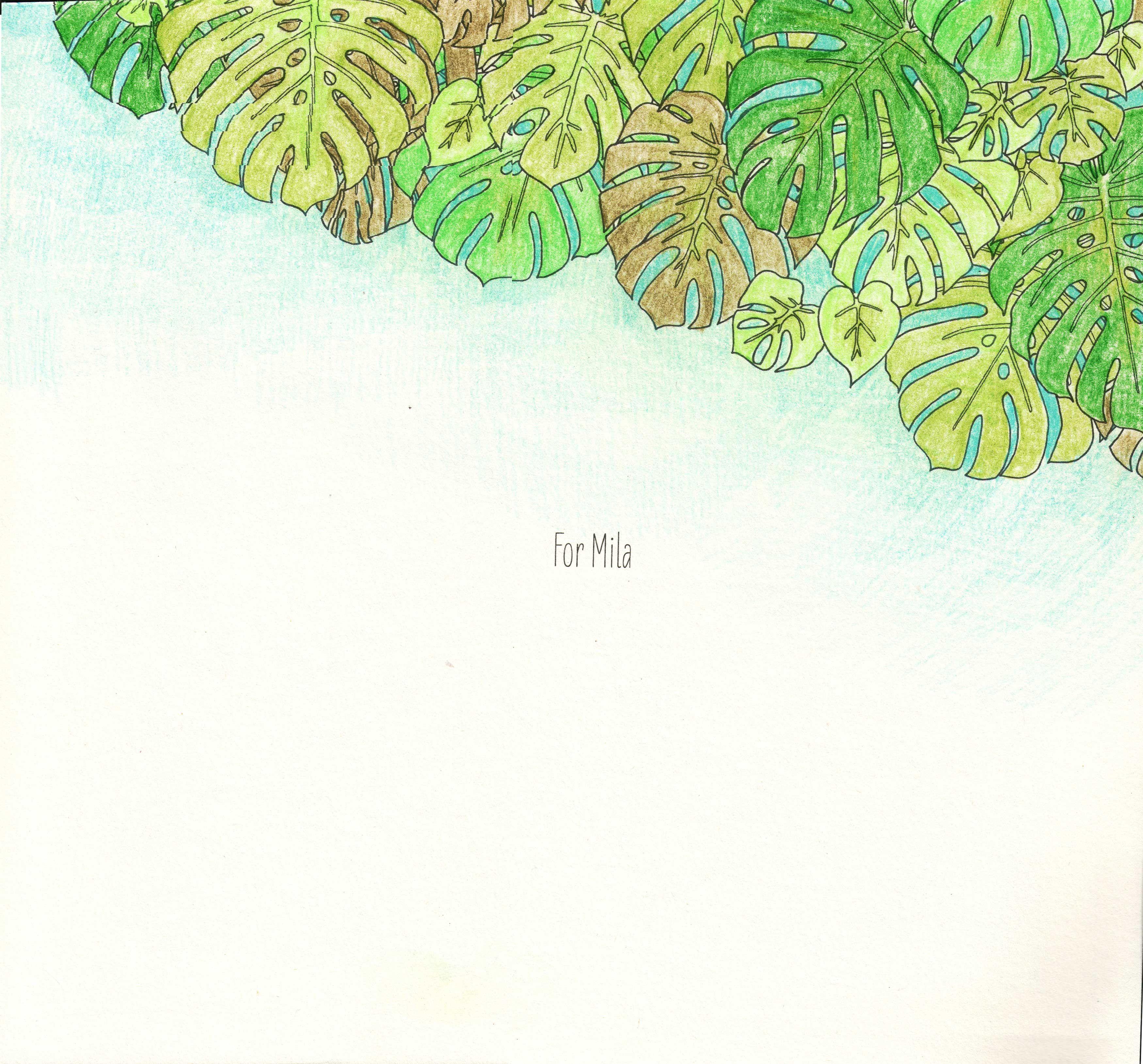 Jade Gedeon Rainforest Escape coloring book | Jade Gedeon ...