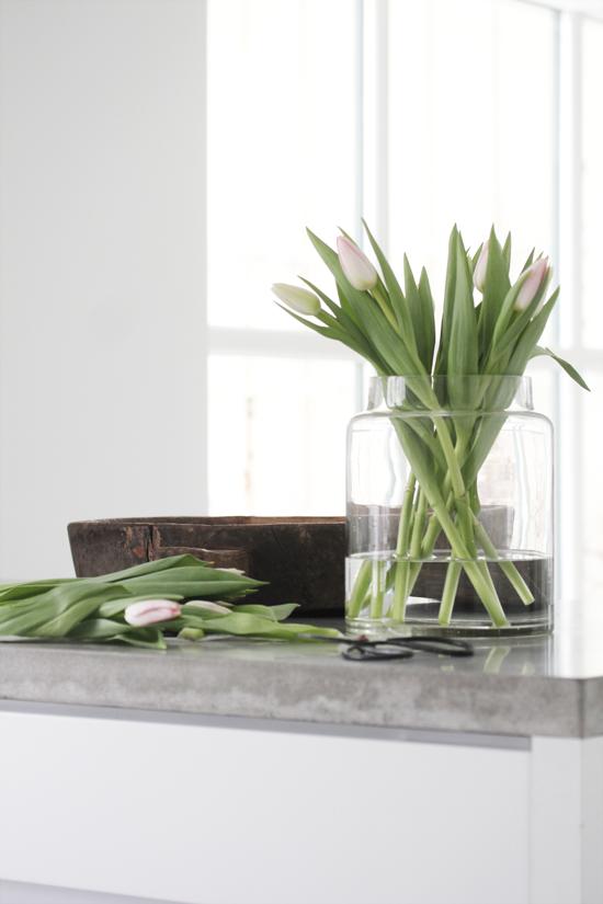 Elsker tulipaner