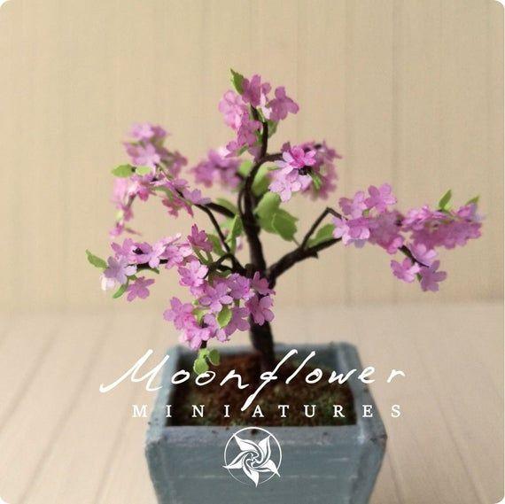 Kit Miniature Dollhouse Garden Cherry Blossom Bonsai Kit Etsy In 2021 Bonsai Kit Dollhouse Garden Cherry Blossom Bonsai Tree