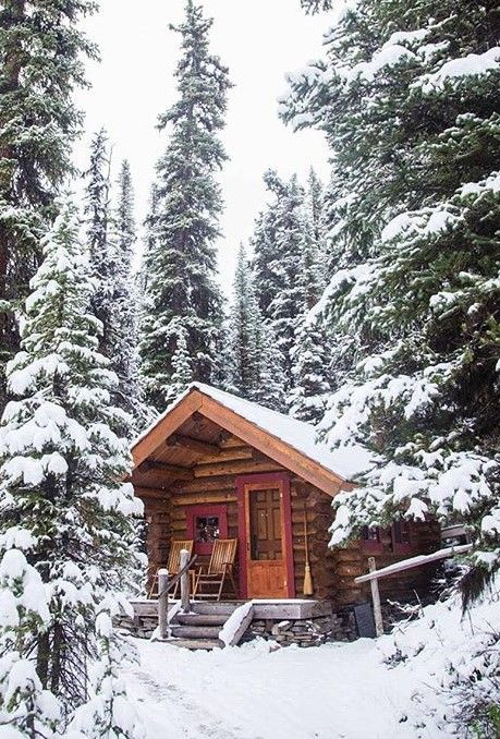 This Tiny Cabin In The Redwoods Is The Perfect Getaway For: Winter Spring Summer Fall, This Little Cabin Is Perfect