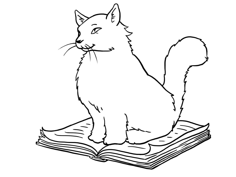 صور قطط روعة للتلوين تلوين قطط للاطفال رائع صور قطط للتلوين 2013 Cat Coloring Book Coloring Pages Cat Girl