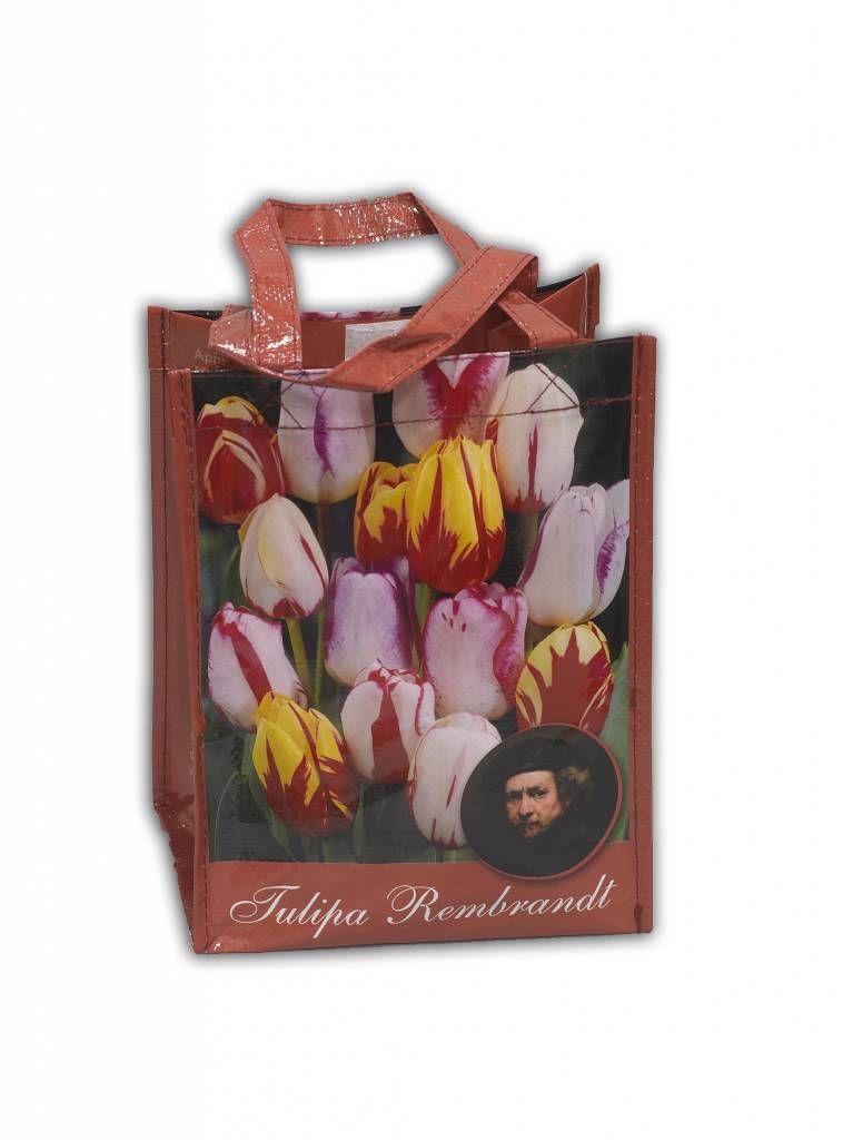 b9c232d5a63 Typisch Hollands Shop Tulpenbollen Gemengde Tulpenbollen in Geschenktas