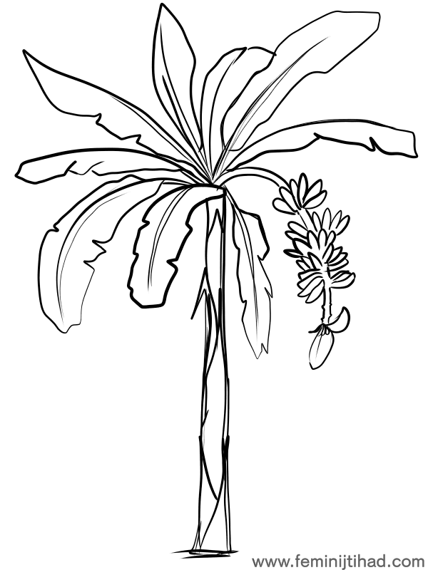 Free Banana Coloring Pages To Print Free Coloring Sheets Tree Coloring Page Coloring Pages Fruit Coloring Pages