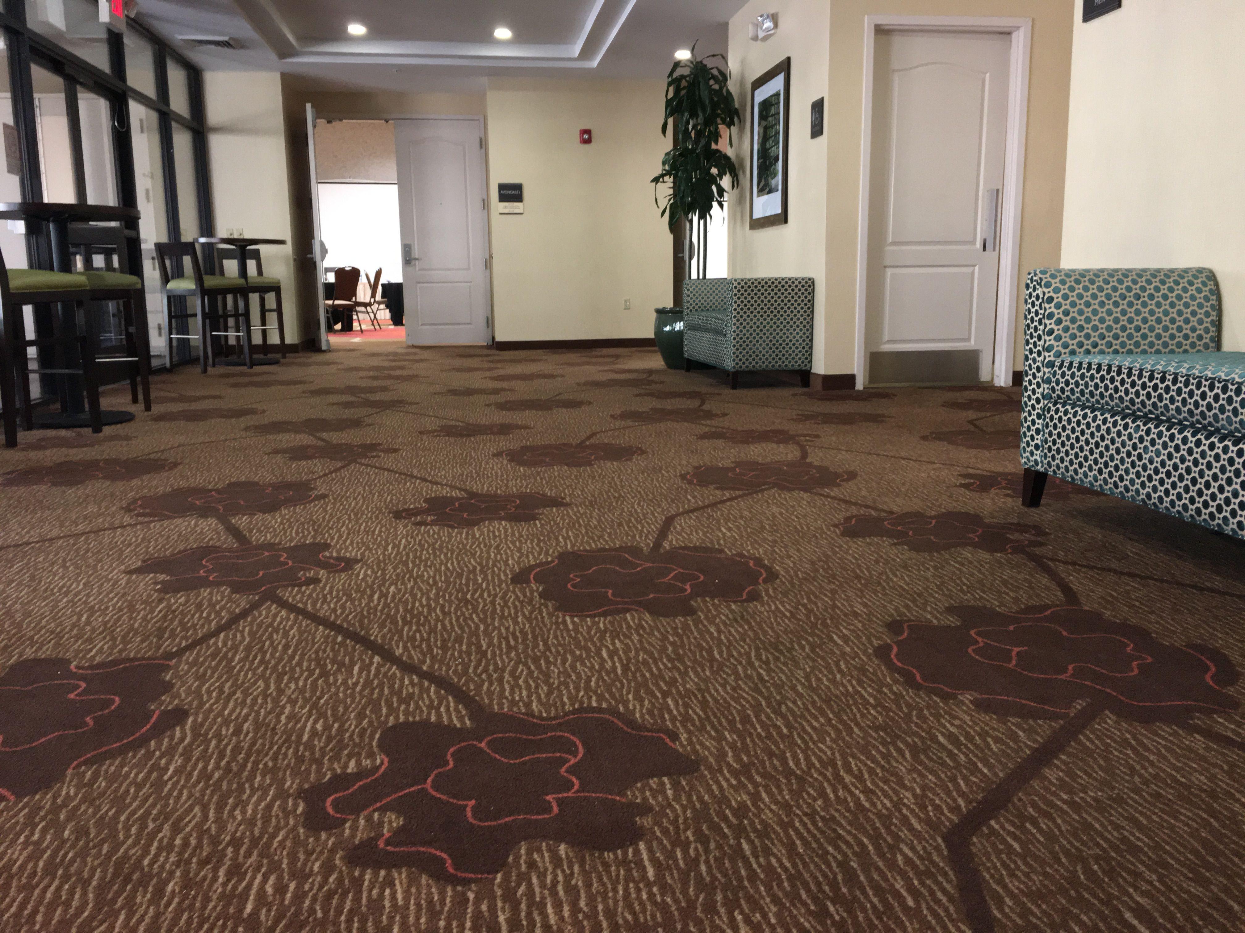 Commercial Carpet Cleaning Service in Phoenix AZ