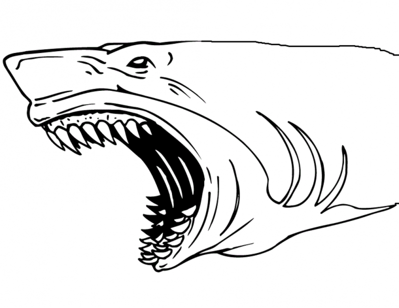 Horrable Shark Jaws Coloring Page
