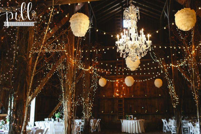 friedman farms dallas pa wedding photography