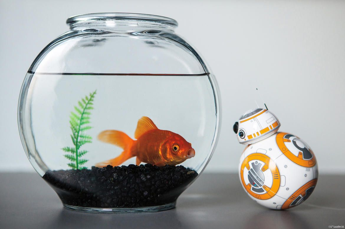 Holiday gift guide 2019 star wars bb8 star wars