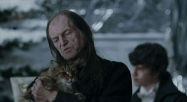 Harry Potter And The Goblet Of Fire 2005 Cinema Cats Harry Potter Characters Harry Potter Character Actor