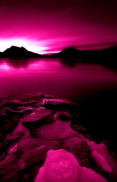Black and Fuchsia Landscape  wallpapers  Pink Pink