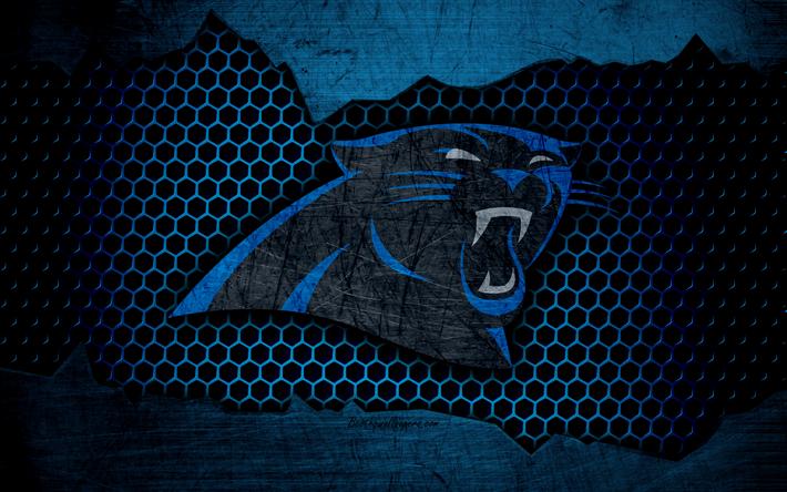 Fondos De Pantalla De Caroline: Descargar Fondos De Pantalla Carolina Panthers, 4k