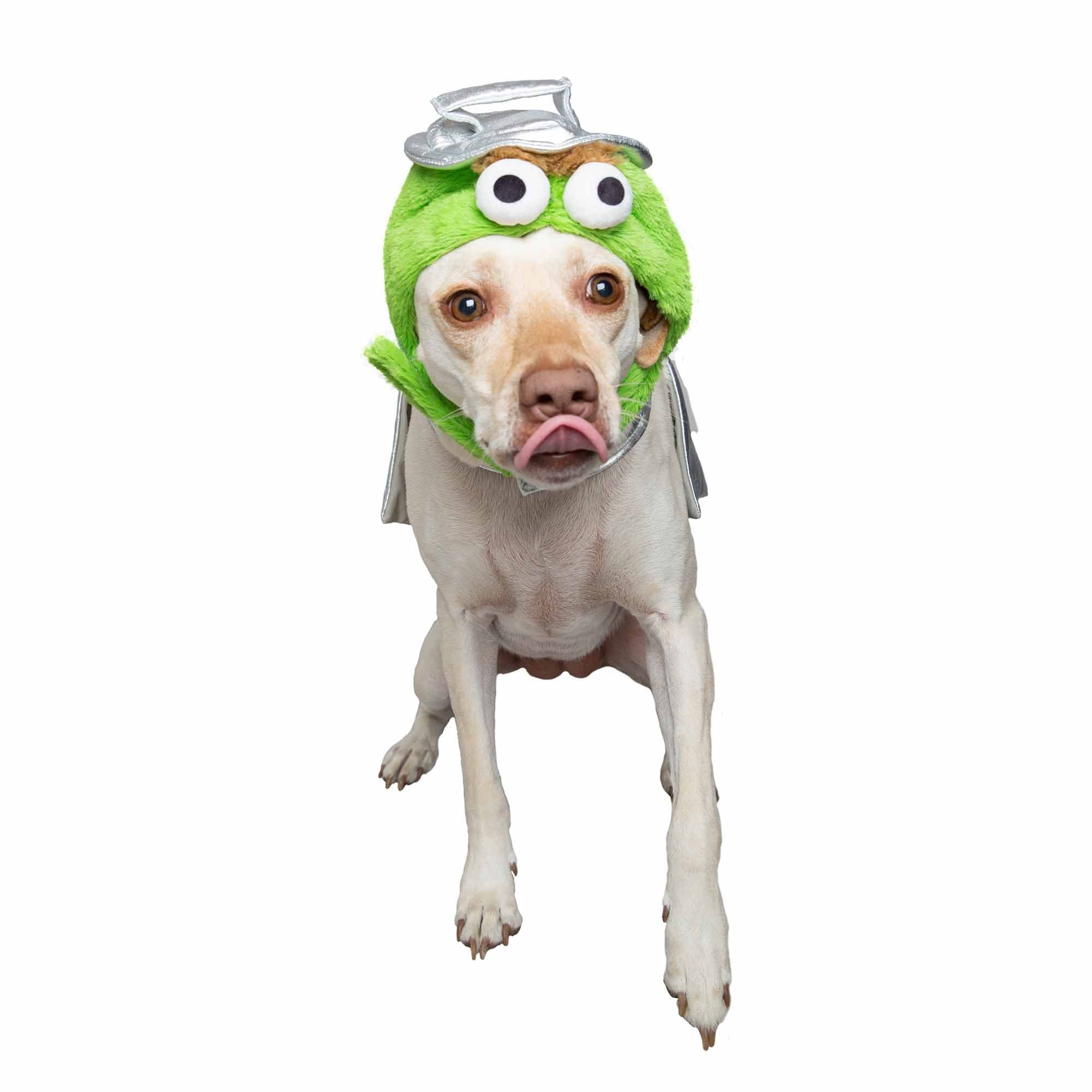 Pet Krewe Oscar The Grouch Costume For Dogs X Large In 2019