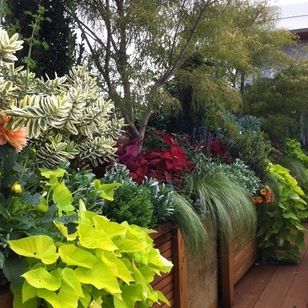 Lots of Tropical Gardens + Traditional Glenna Partridge ...