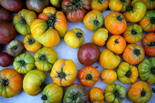 Heirloom Tomatoes at Venice Beach Farmers Market | www.rachelphipps.com @rachelphipps