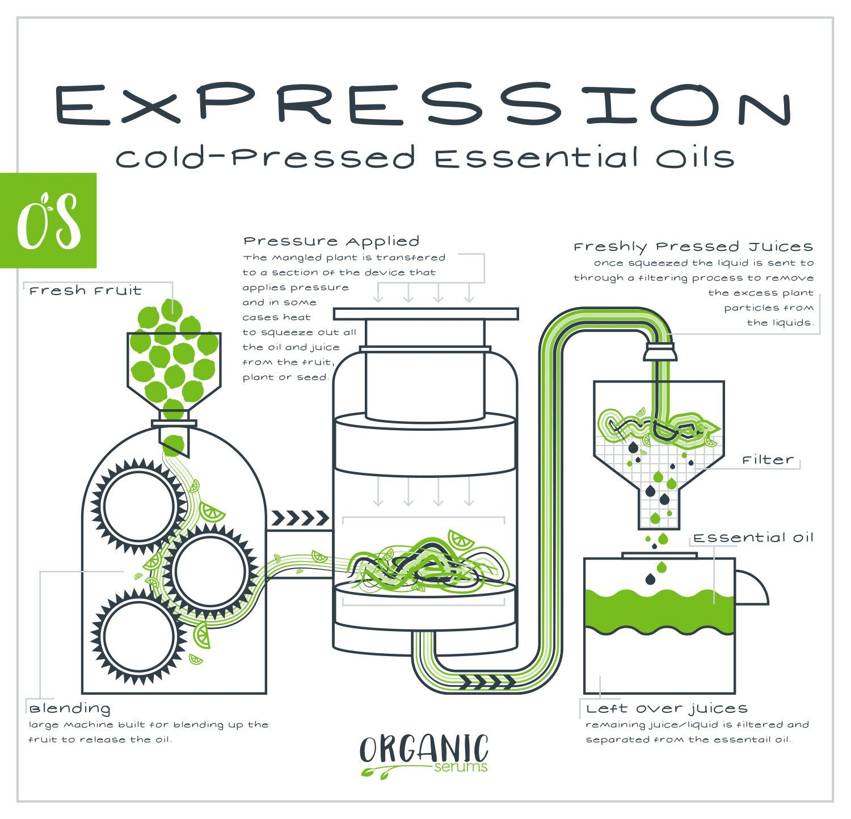 Plant fabrication essential oils