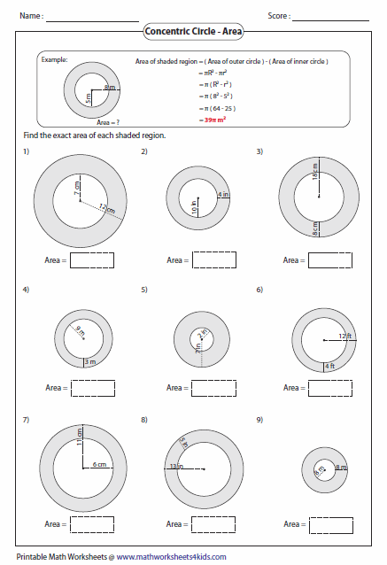 22+ Perimeter circumference and area worksheet info